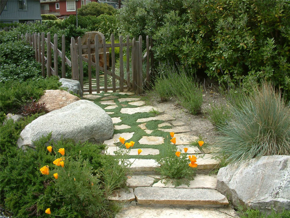 Whimsical Pathway