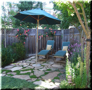 Backyard Patio Garden